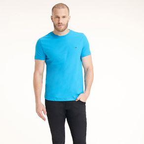 Camiseta-Masculina-Classica-Gola-C-Lisa----P