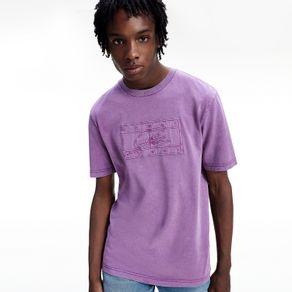 Camiseta-Lewis-Hamilton-Ampla-Garment-Dyed---M